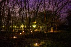 Svátek světel